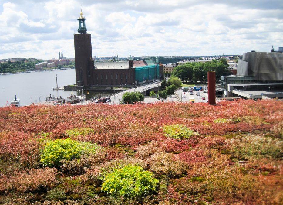 Gröna tak skapar miljonvärden i samhällsnytta