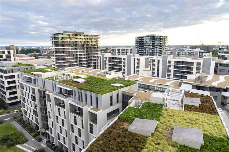 Green roofs – several different possibilities