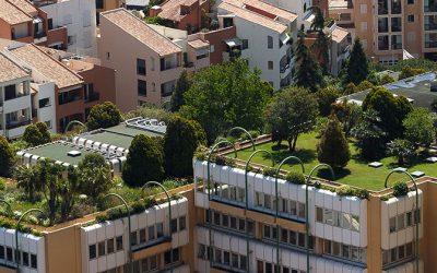 """""""Sverige skulle kunna bli ledande på kunskap om digitalisering och urban grön planering"""""""