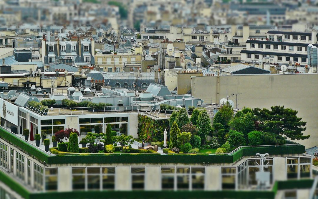 Five functionalities for a green roof