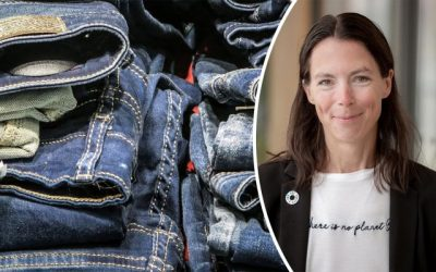 """A summary of """"Extended producer responsibility for textiles – part of the circular economy"""""""