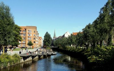 New surprising report: Danish cities are growing both denser and greener